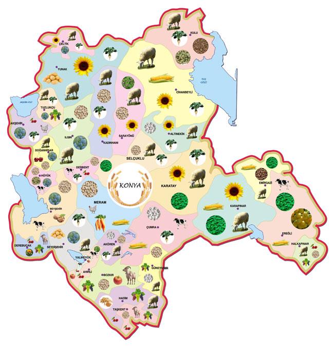 Konyanın tarımsal deseni grafik